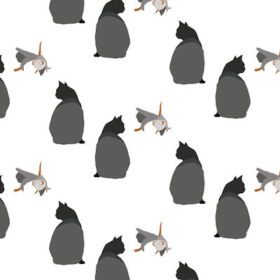 catCARP by Jenny Knuth